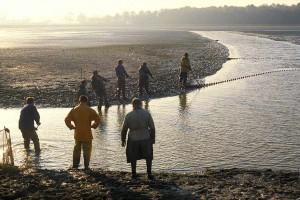 A l'aube, pêche d'étang au Plantay