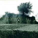Certaines mottes isolées en milieu rural ont été fouillées dans les années 1970, comme celle de Saint-Cyr-sur-Menthon