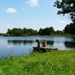 L'étang Neyrieux à Joyeux