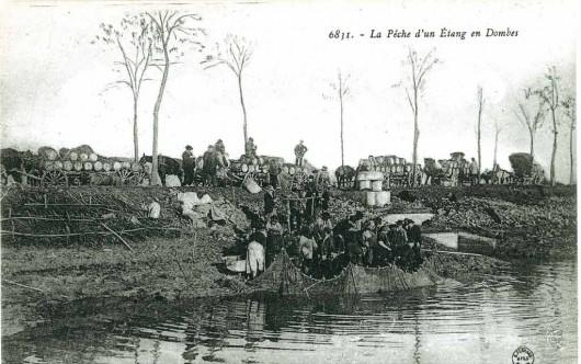 Une pêche en Dombes au début du XXe siècle